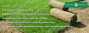 Prix Du Gazon : livraison du gazon en rouleau en pays de la loire ~ Premium-room.com Idées de Décoration