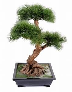 Arbre D Intérieur : bonsa artificiel arbre miniature pin en coupe plante d 39 int rieur cm ~ Preciouscoupons.com Idées de Décoration
