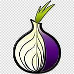 Tor Icon Browser Clipart Plant Transparent Leaf