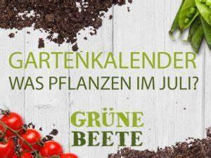 Pflanzen Im Juli : gebratene hirschkeule mit gem se dazu kleines k rbisgratin rezept eat smarter ~ Orissabook.com Haus und Dekorationen
