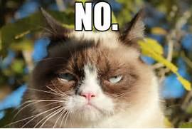 Angry Cat No Grumpy ca...