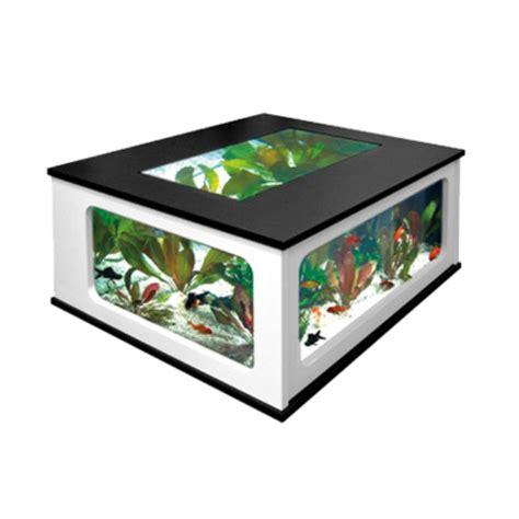 aquarium vente en ligne belgique table basse aquarium