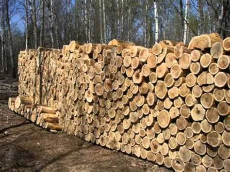 Top 10 Natural Building Materials (video)  Youtube