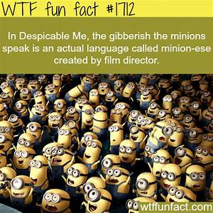 Despicable Me Minions Language Facts Wtf Fun Facts