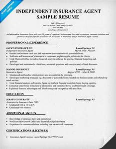 insurance agent licensed health insurance agent With insurance professional resume