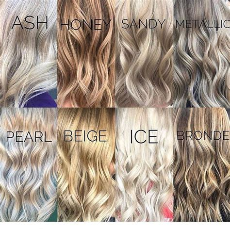 Different Highlight Shades by Different Shades Of Hair Color Hair Color In