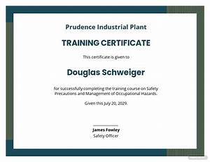 Free Industrial Training Certificate Template Word Doc