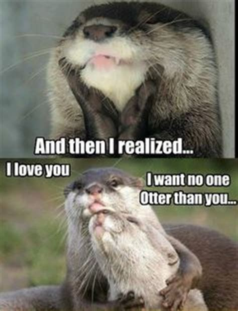 Otter Love Meme - 1000 images about otters thats right they get their own board on pinterest otter meme