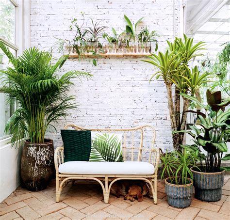 เลือกกระถาง ให้เหมาะกับต้นไม้ในบ้าน - บ้านและสวน