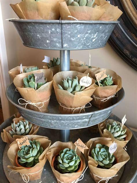 cute succulent cactus party ideas   baby shower