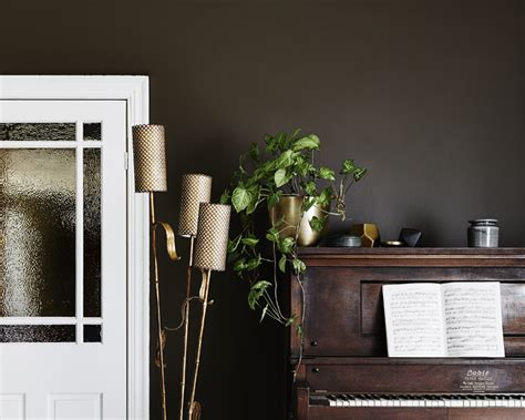 View The Most Popular Brown Paint Colours & Schemes