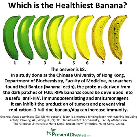 Why Bananas Are Good For Weight Loss and Immunity