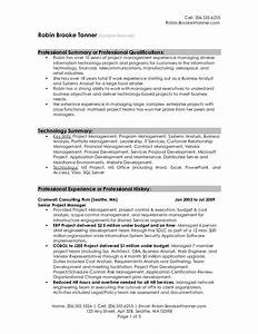 Professional summary resume examples professional resume for Free resume summary