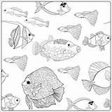 Aquarium Fish Drawing Coloring Getdrawings Printable Sea Ocean sketch template