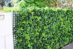 Mur Végétal Extérieur : cr er un mur v g tal artificiel avec des plaques ~ Louise-bijoux.com Idées de Décoration