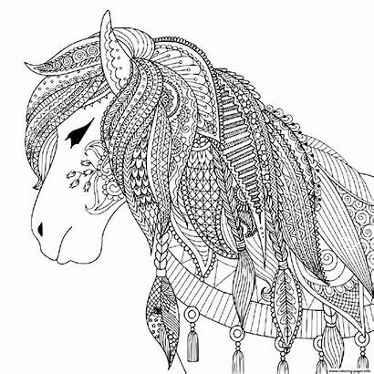 Coloring Horse Adult Pages Printable Zendoodle