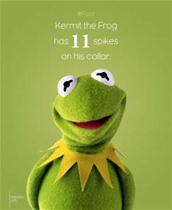 Hermit The Frog Funny Quotes. QuotesGram