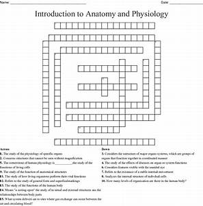 General Anatomy And Physiology Chapter 6