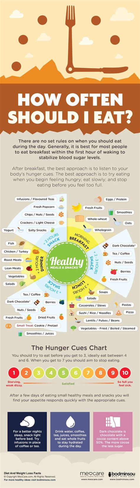 How Often Should I Eat? Infographic