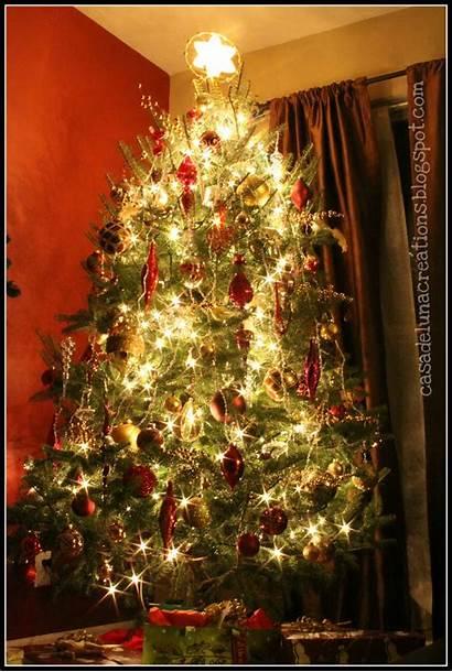 Tree Christmas Oh Glowing