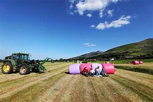 €50m Investment In Job Creation Part Of Government's Rural ...