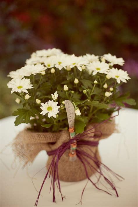 ideas  fall wedding mums  pinterest fall