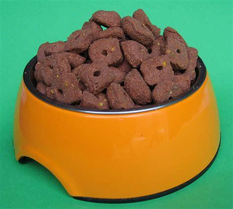 Dinovite Homemade Dog Food Recipe Homemade Ftempo
