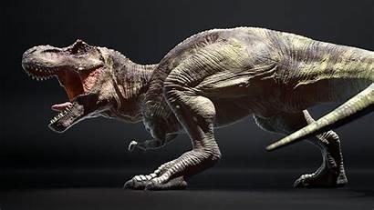 Rex Dinosaur Zbrush Verney Carron Antoine Artstation