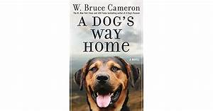 A Dog39s Way Home By W Bruce Cameron Reviews Discussion