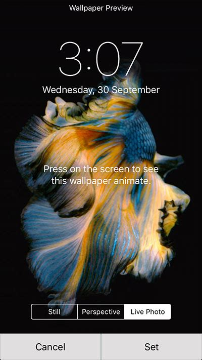 How to Set and Use Live Wallpapers on iPhone 6s and 6s Plus
