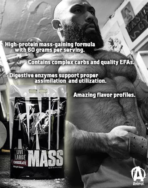 Animal Supplements Wallpaper - animal mass by universal nutrition at bodybuilding