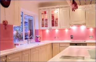 pink kitchen ideas contemporary modern pink kitchen decorate ideas