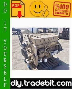 Cummins L10 And M11 Series Diesel Engine Alternative