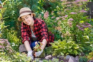 Heimische Pflanzen Für Den Garten : so kommen sie g nstig an pflanzen f r den garten ~ Michelbontemps.com Haus und Dekorationen