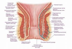 Чем отличаются симптомы простатита от геморроя