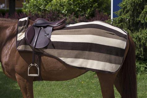 quarter equi sheet theme sheets newmarket fleece stripe exercise horse