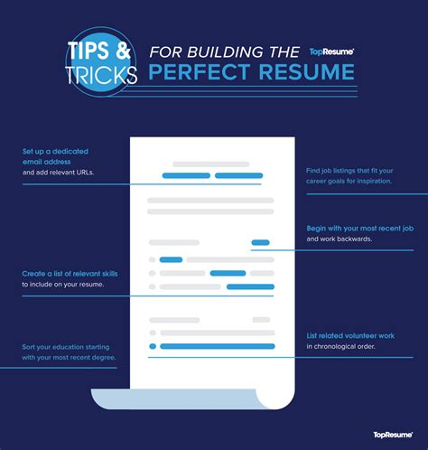 steps  writing  perfect resume topresume
