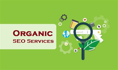 organic seo organic seo services india seo company seo packages india