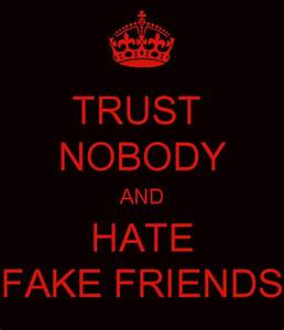 TRUST NOBODY AND HATE FAKE FRIENDS - KEEP CALM AND CARRY ...