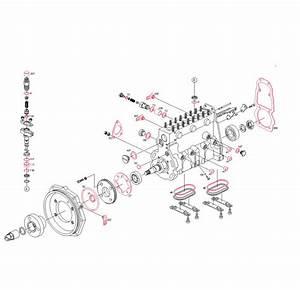 Vent Screw For Bosch Pe Inline Pumps