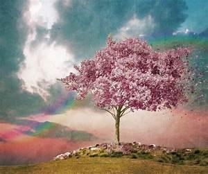 Fleur De Cerisier Signification : sakura fleur magique manga japon ~ Melissatoandfro.com Idées de Décoration