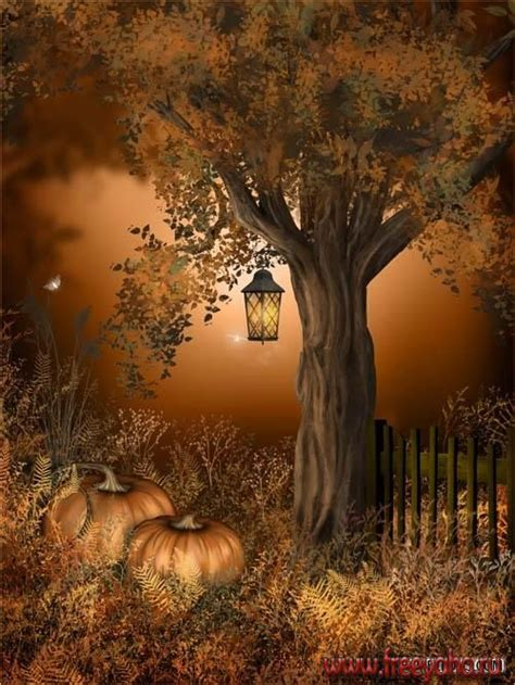 autumn fairy backgrounds fony ot jaguarwoman fairy