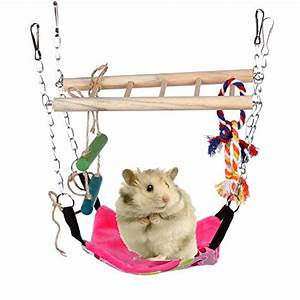 Hamster Cages Toys Balls Treats Bedding