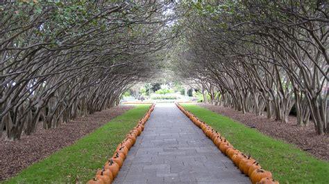 Dallas Garden by Arthur Berger The Cultural Landscape Foundation