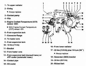 2000 Vw Jetta Engine Diagram Vw Fuse Box Layout Auto Hondaa Bayau Madfish It