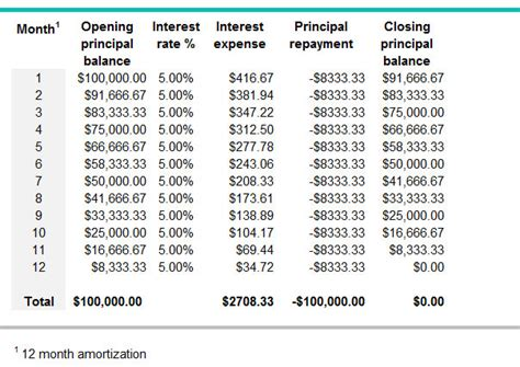 What is an amortization period