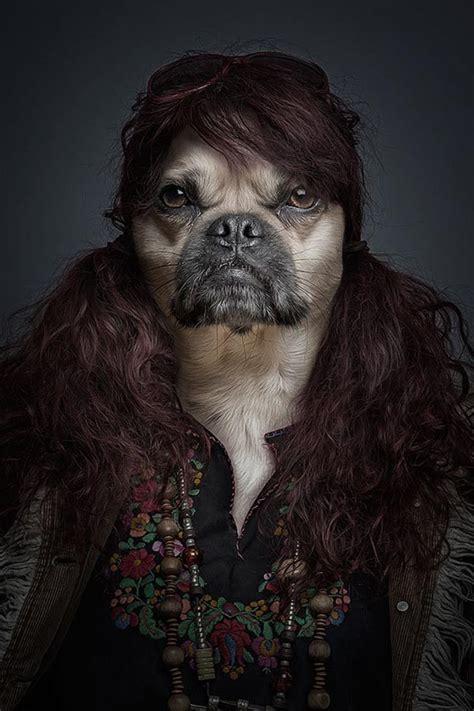 underdog  dog     dressed   human