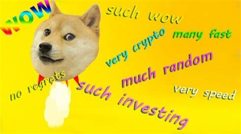 Dogecoin's Soaring Value Reduce The Credibility Of Crypto ...
