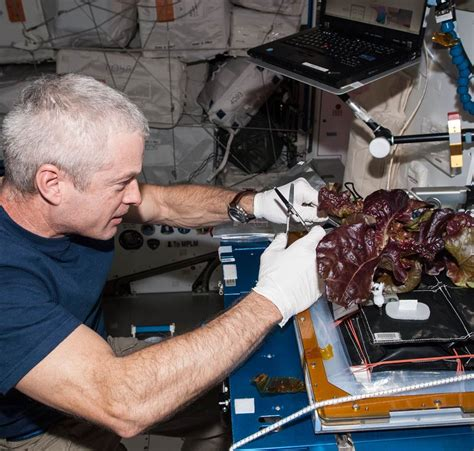 New Research Headed To Station Helping Nasa Explore The