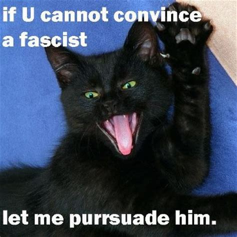 Socialism Memes - socialist meme socialist meme